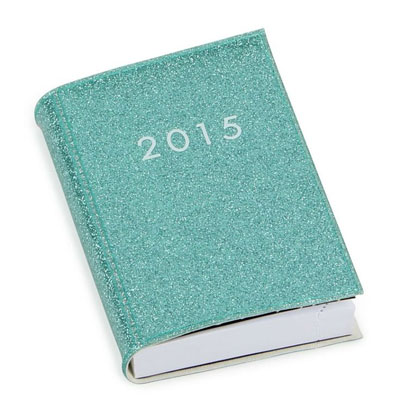 Designer_Diaries_notebooks_2015_10