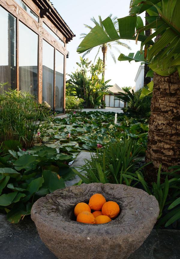 Atzaro_Ibiza_garden