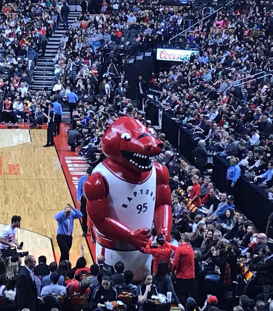 Toronto Raptors NBA team mascot.