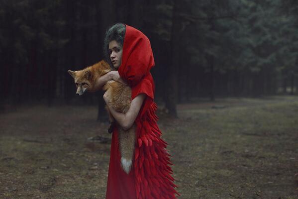 KaterinaPlotnivoka_Fox
