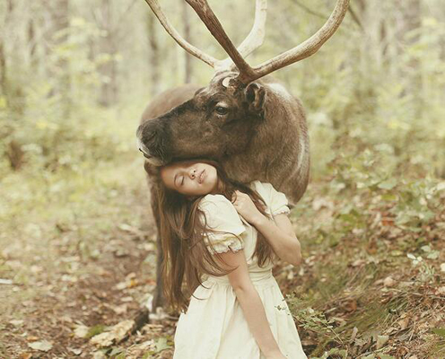 KaterinaPlotnivoka_Moose