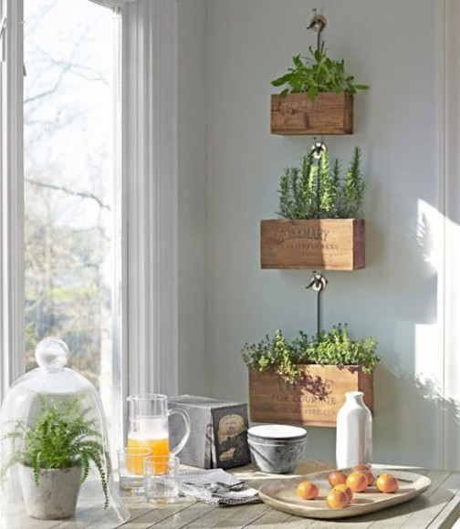 Plant_Feature_Wall_Ideas_3