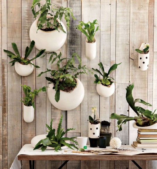 Plant_Feature_Wall_Ideas_6