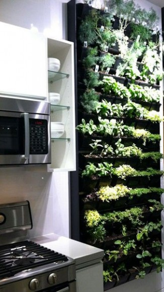Plant_Feature_Wall_Ideas_9
