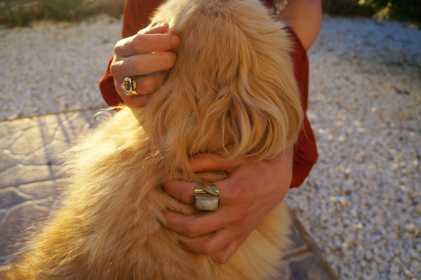 Ibiza_Sunset_Rings_Dog