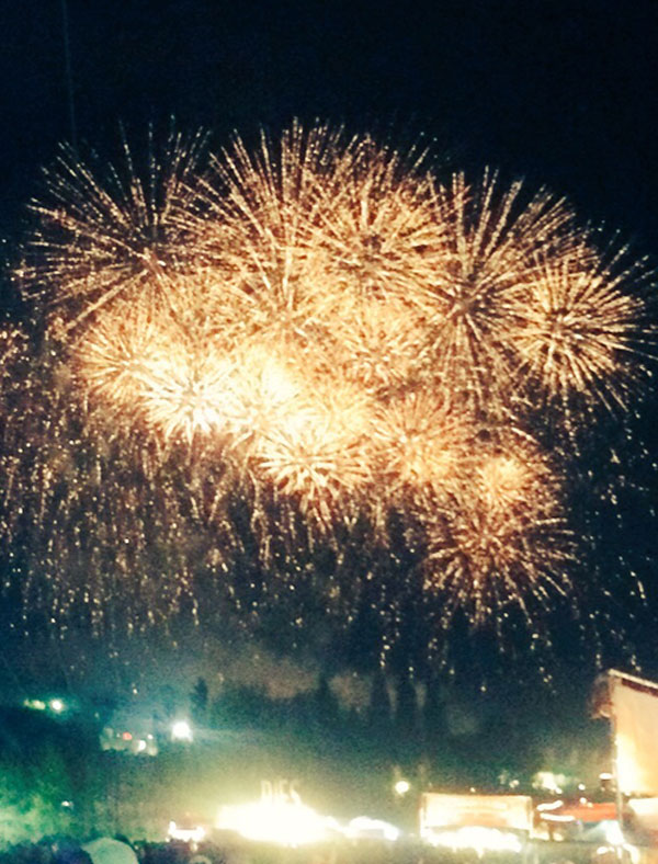 Bestival2015_Fireworks